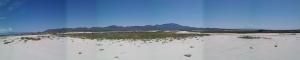 Wilcox desert